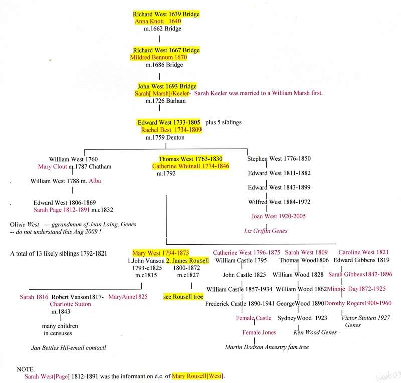 essay on my family history